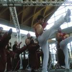 Fitboxe Rimini 2008